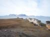 svalbard-2012-018
